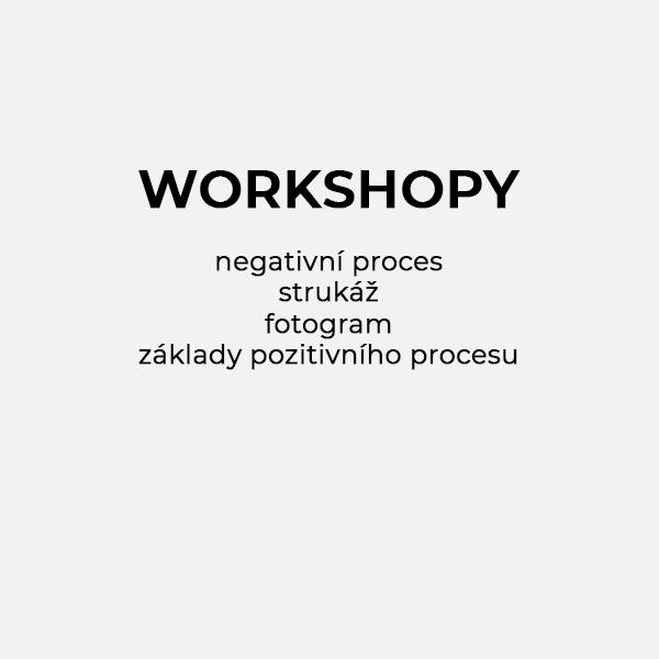 Workshopy
