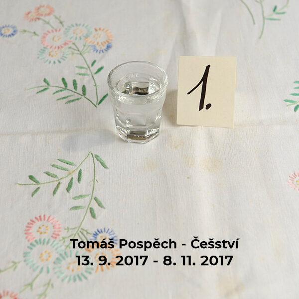 Tomáš Pospěch – Češství